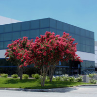 Mira Loma, CA - Citivest Commercial industrial project